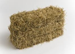 Straw Bale 6 Pack SAVE $15