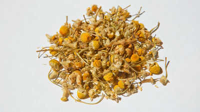 Chamomile: An Often-Forgotten Weed