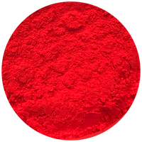 Neon Red Pigment