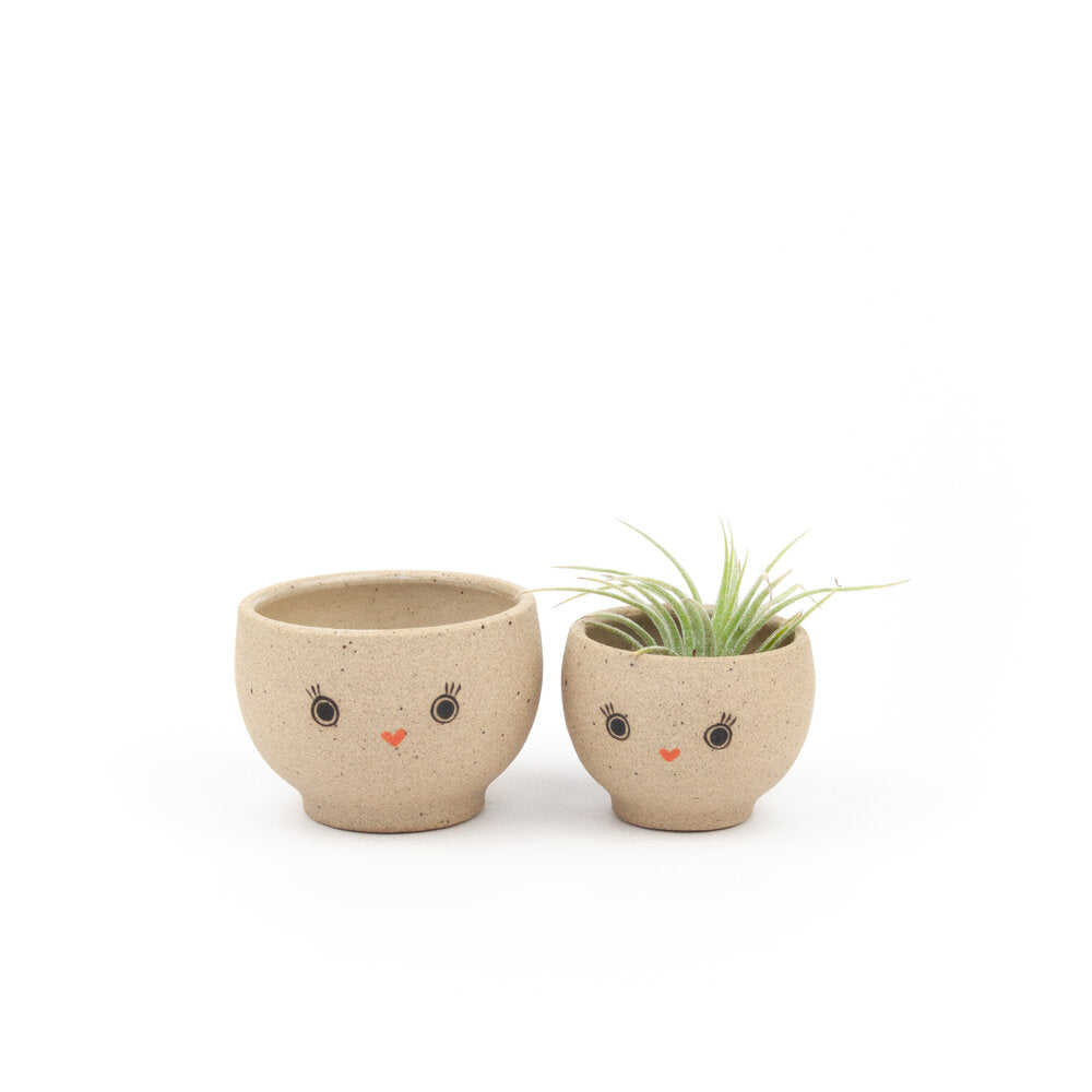 Lil Air Plant & Trinket Bebe Bowl