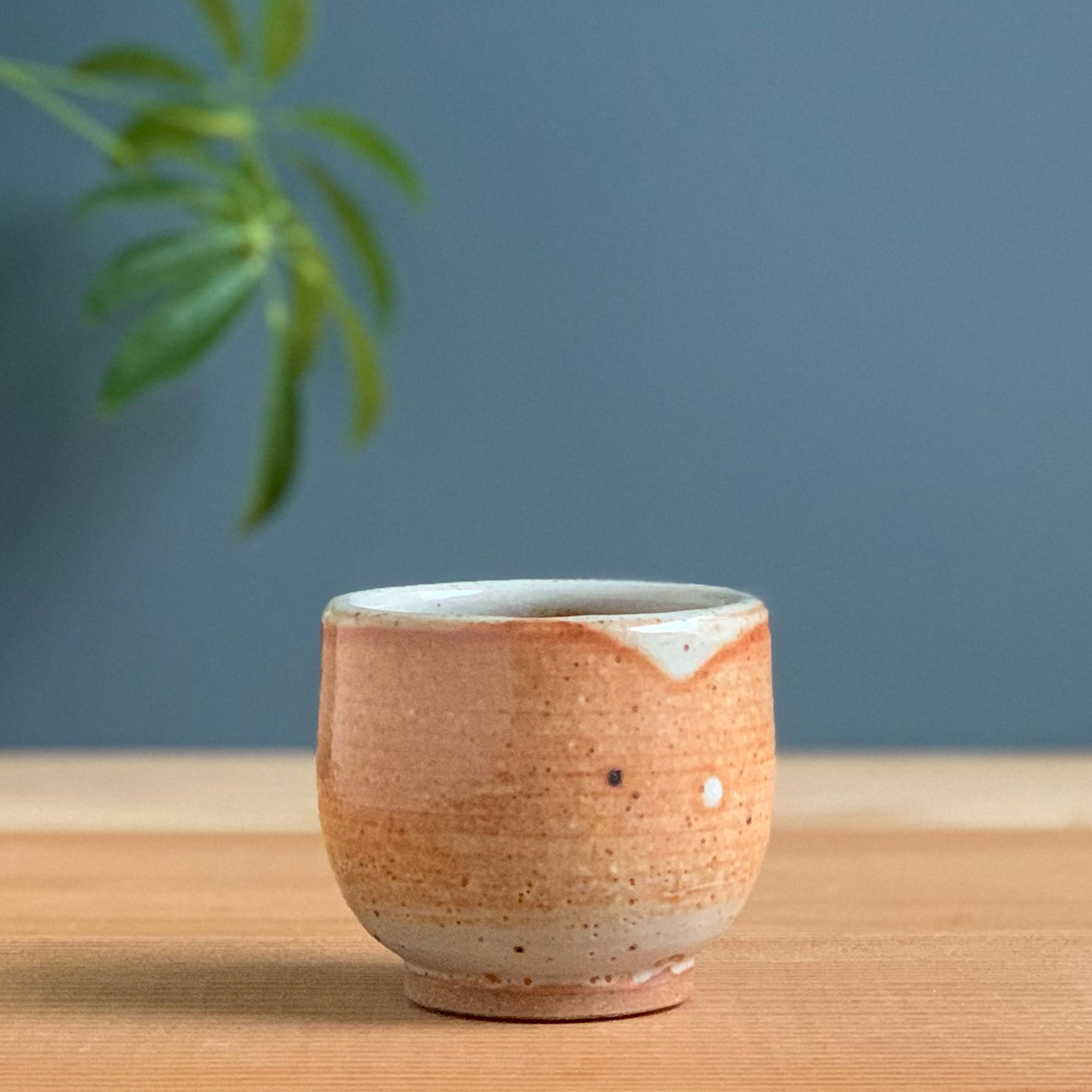 Small Peachy Shino Cup