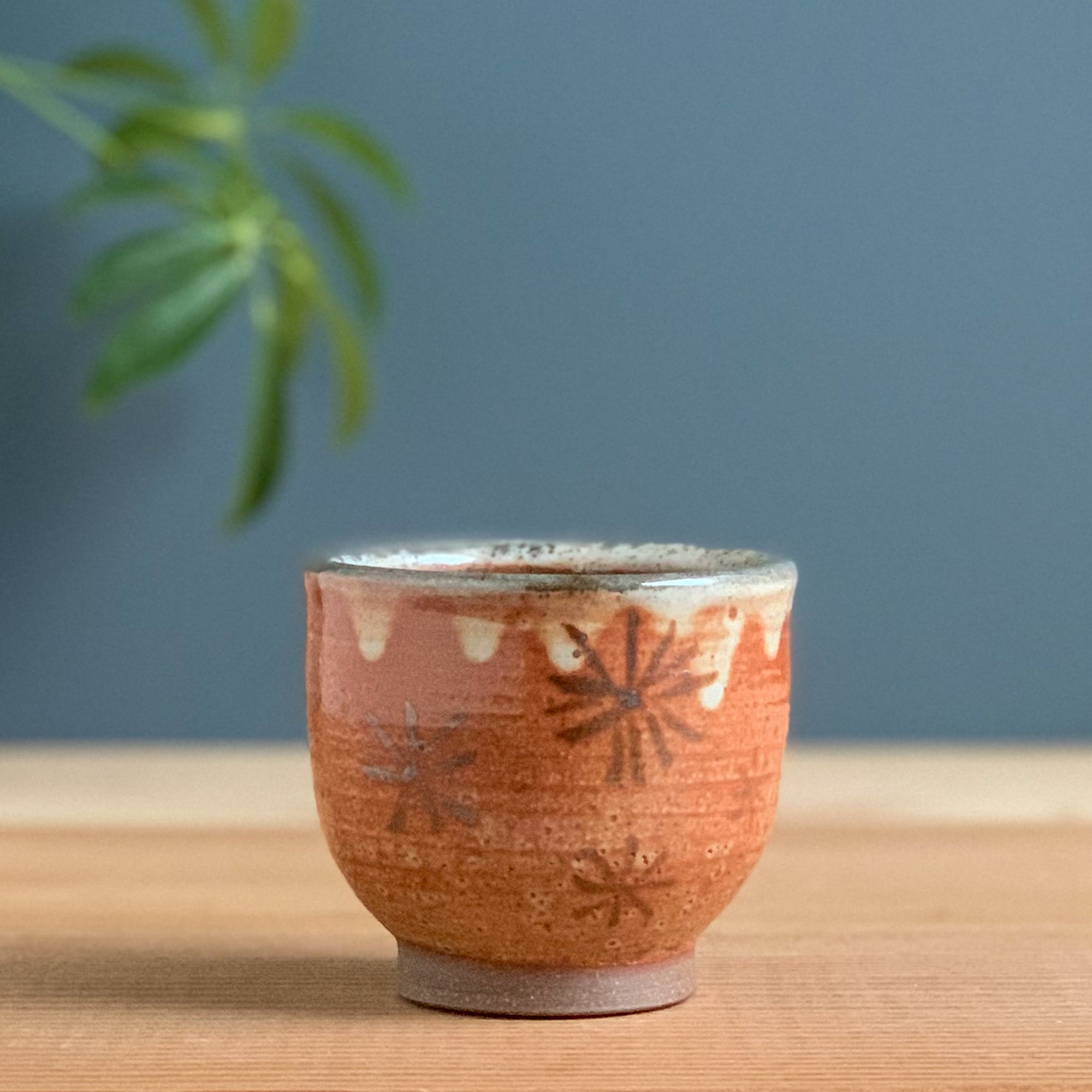 Small Shino Cup with Iron Oxide Stars