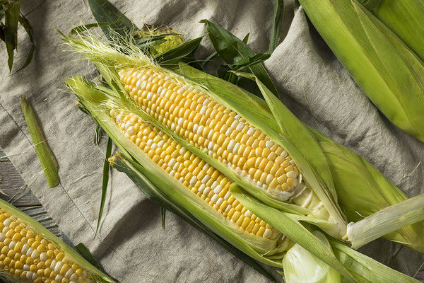 Fresh Veggies SG Fresh Vegetables Online Delivery in Singapore-Buy 1 get 1 FREE White & Yellow Corn