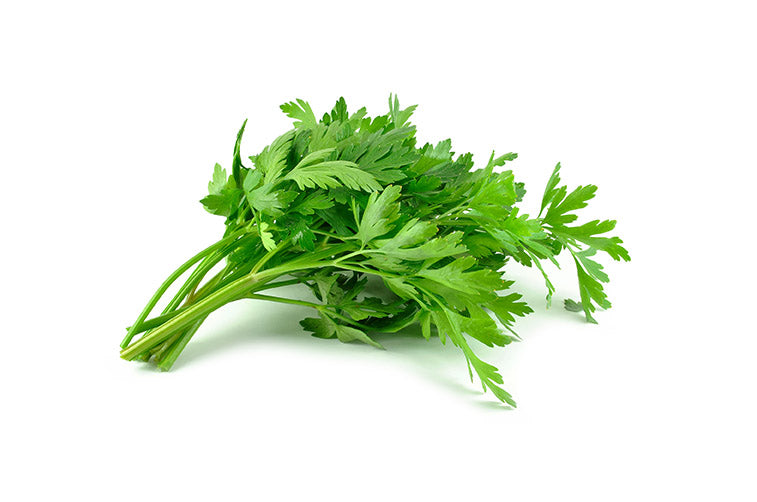 Parsley-001-Fresh Veggies SG Fresh Vegetables Online Delivery in Singapore 香菜