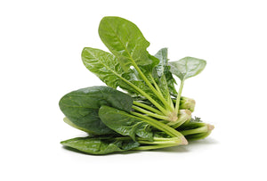 Spinach - 001-Fresh Veggies SG Fresh Vegetables Online Delivery in Singapore 圆菠菜