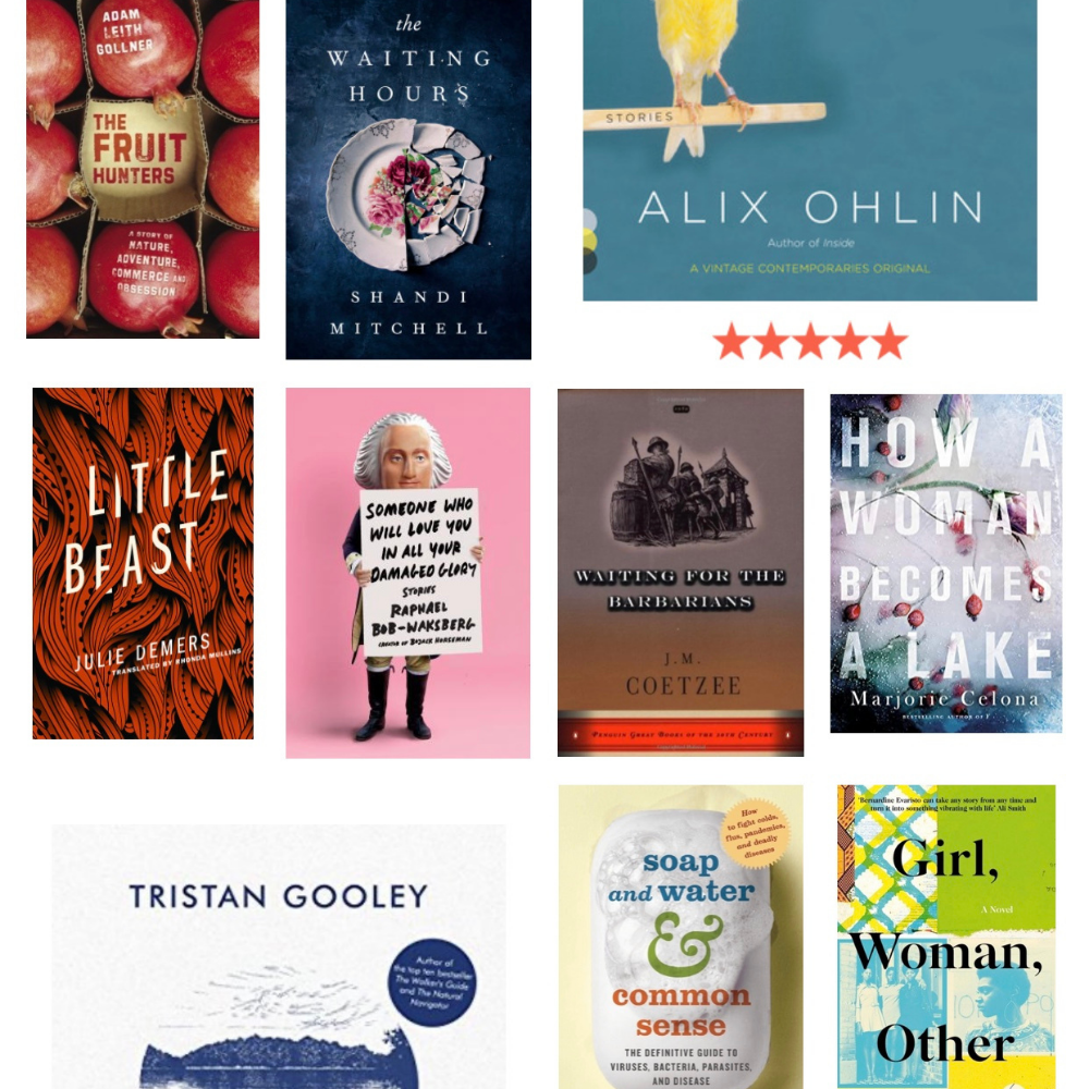 Reflecting on 2020: A Year in Books