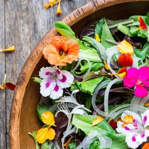 Wild leaves, edible flowers, toasted hazelnuts, orange and honey vinaigrette. Serves 20 guests