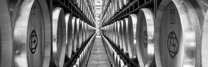 Barrels at Bodegas Altanza
