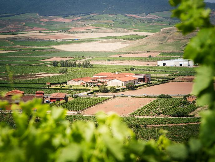 Bodegas Altanza, the winery where the Lealtanza wines are made, seen from a distance