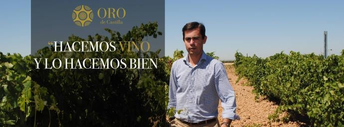 Pablo del Villar in the vineyards where grapes for Oro de Castilla are grown
