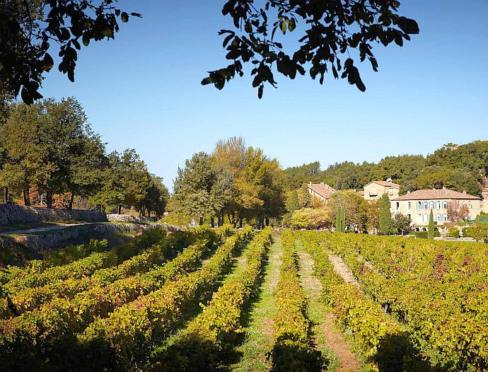 View of Château Miraval and vineyards