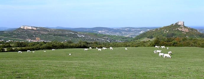View from the vineyards of Dominique Cornin