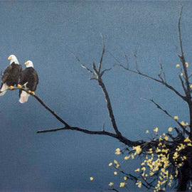Together (pair of eagles)
