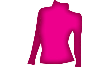 Long sleeved Body Collar Top