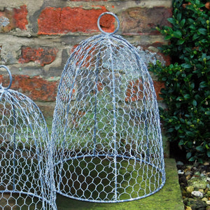 Vintage Kitchen Garden Style Wire Cloche