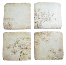 Set of 4 vintage design cow parsley print drinks coasters