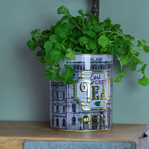 Large earl grey tea kitchen planter tin