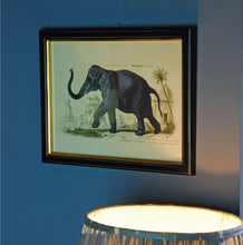 London club framed elephant print