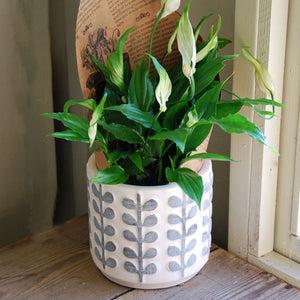 Large French retro ceramic Orla plant pot