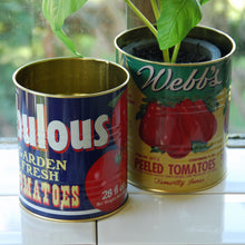 Small retro tomato tin can kitchen storage pot