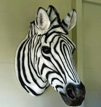 Zebra animal head portrait