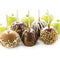 Lazy Susan Chocolate & Caramel Apple Party with Heated Fondue Pot, 25 Sticks, Decorating and Toppings Trays