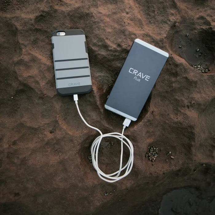 Crave PLUS Portable Charger with QC 3.0 + Type C