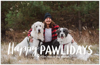 Rescue Dog Kitchen Family Holiday Card