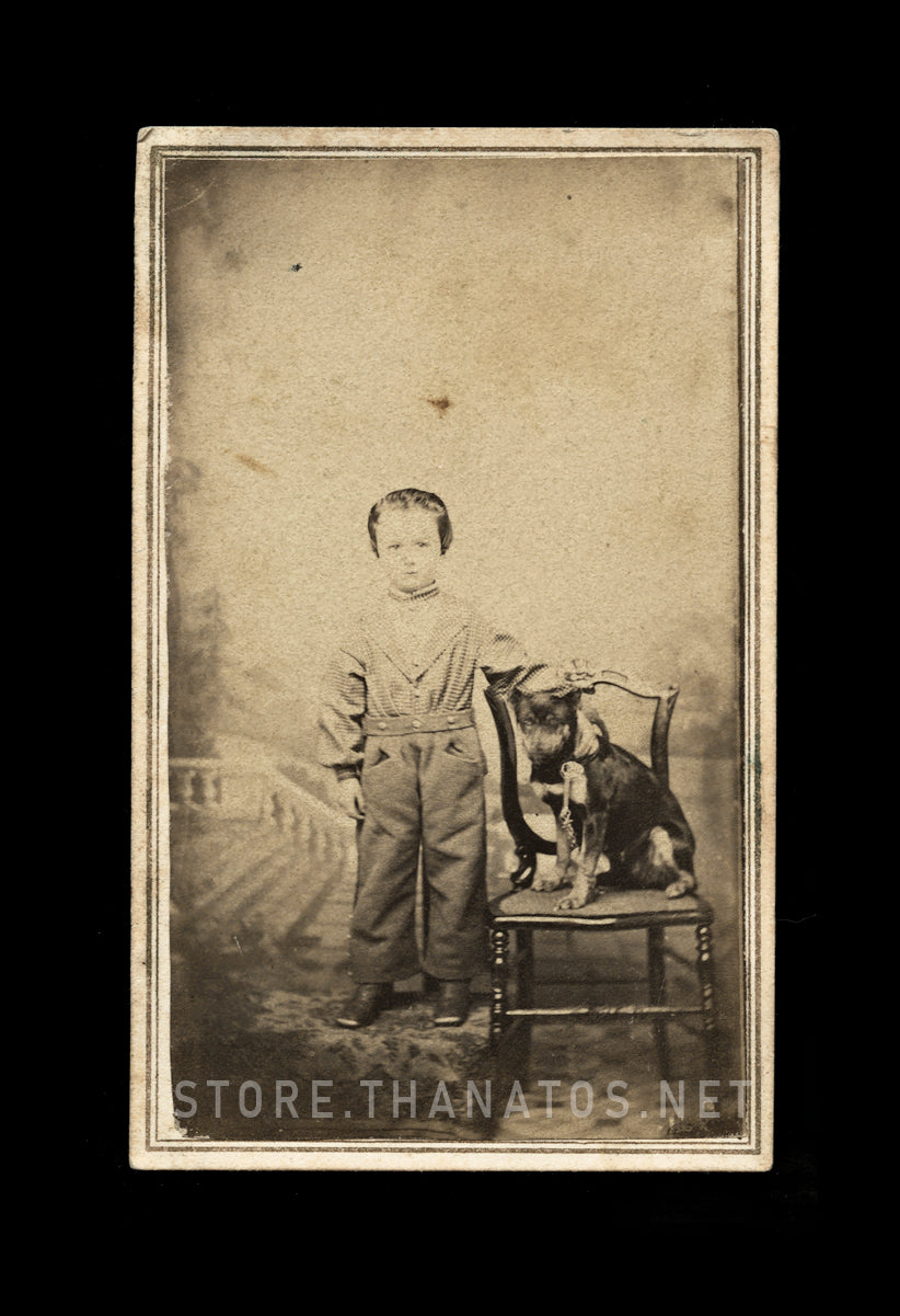 1860s CDV Cute Little Boy & Pet Dog on Leash / Indiana