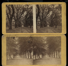 Load image into Gallery viewer, Two Southern / Savannah Georgia - 1860s Stereoview Photos