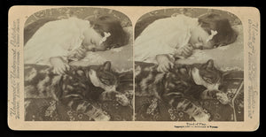 Antique 1898 Stereoview Photo Little Girl Asleep with Cat