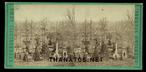 Old 3D Stereoview Photo GREEN-WOOD CEMETERY 1860s / Funeral Graveyard Int.