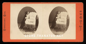 funny antique 3d stereoview photo - happy trick dog in parlor 1870s