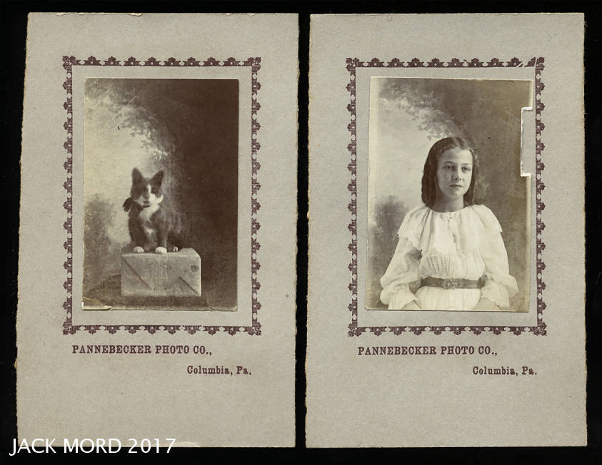 antique 19th century miniature photo set - girl & her cat - columbia pa
