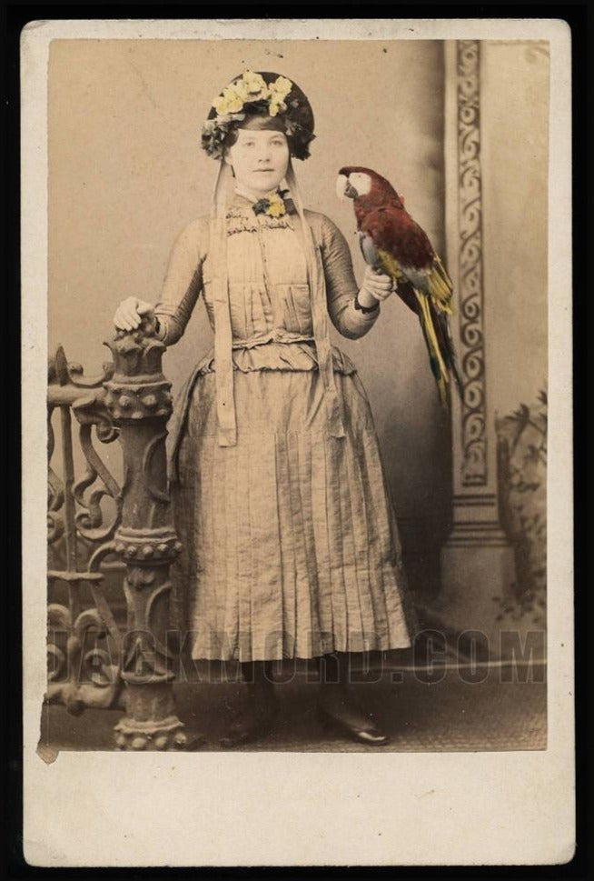 Amazing 1800s Antique Cabinet Photo Girl Holding Tinted Pet Bird - PARROT