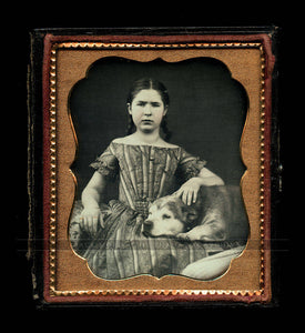 Sweet Image Girl with Braids & Gold Jewelry Old Dog on Lap 1850s Daguerreotype
