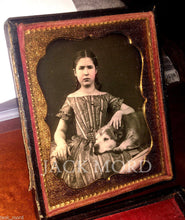 Load image into Gallery viewer, Sweet Image Girl with Braids & Gold Jewelry Old Dog on Lap 1850s Daguerreotype