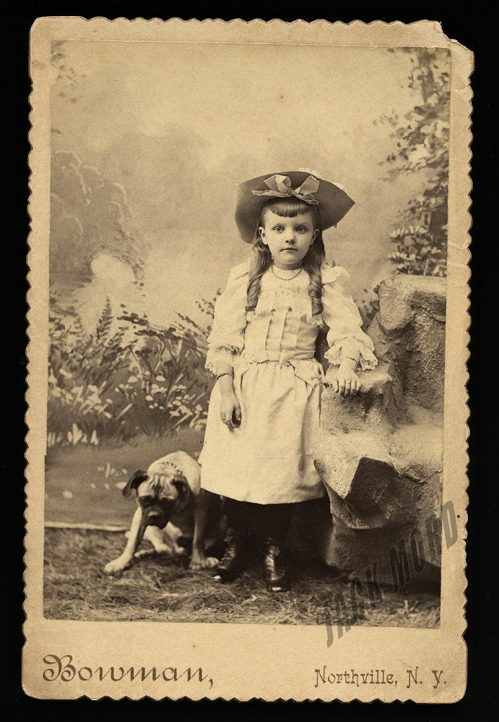 Great Antique Cabinet Card - Little New York Girl in Big Hat & Pit Bull? Dog