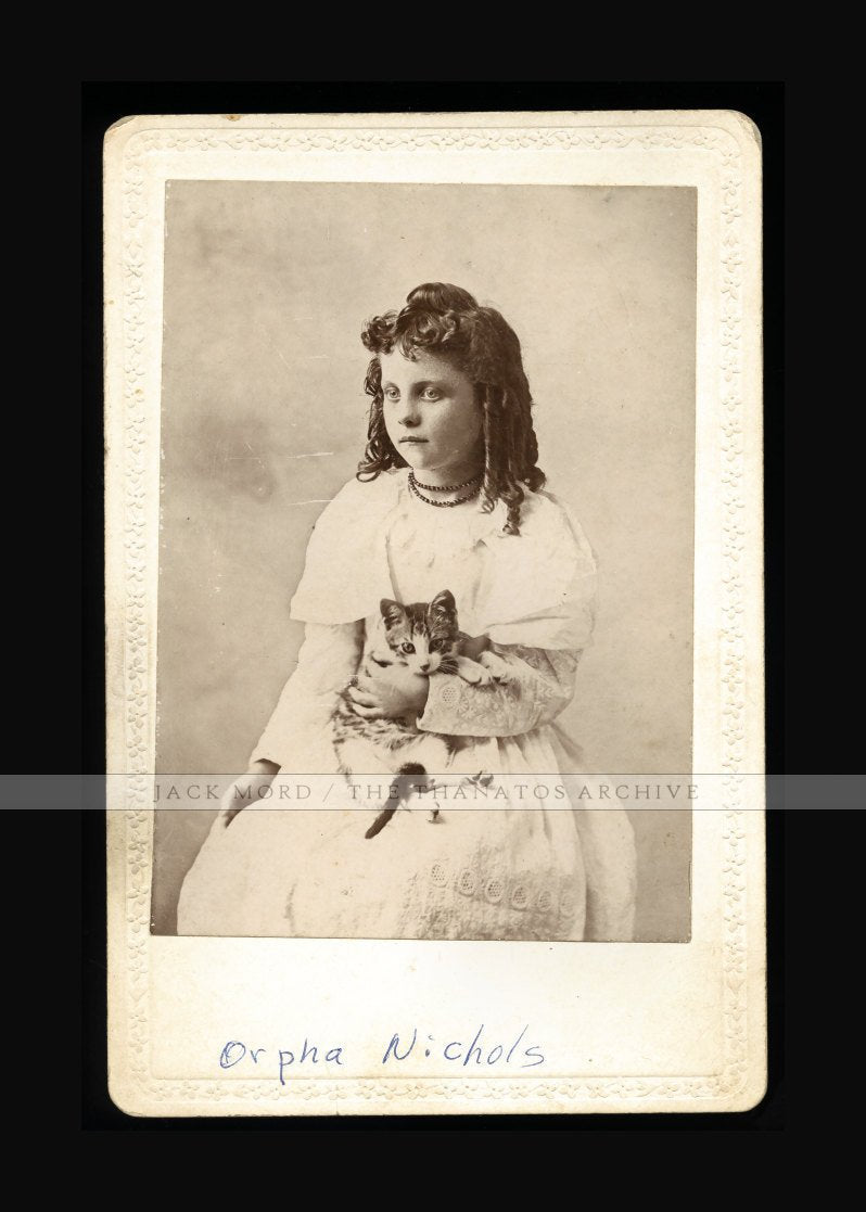 Antique Cabinet Photo ID'd Nichols Girl Holding Striped CAT or Kitten - South Carolina?