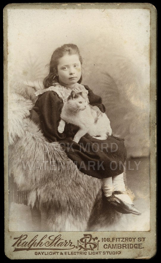 Electric Light - Girl Holding Pet CAT - Great Antique Victorian Era Photo - UK