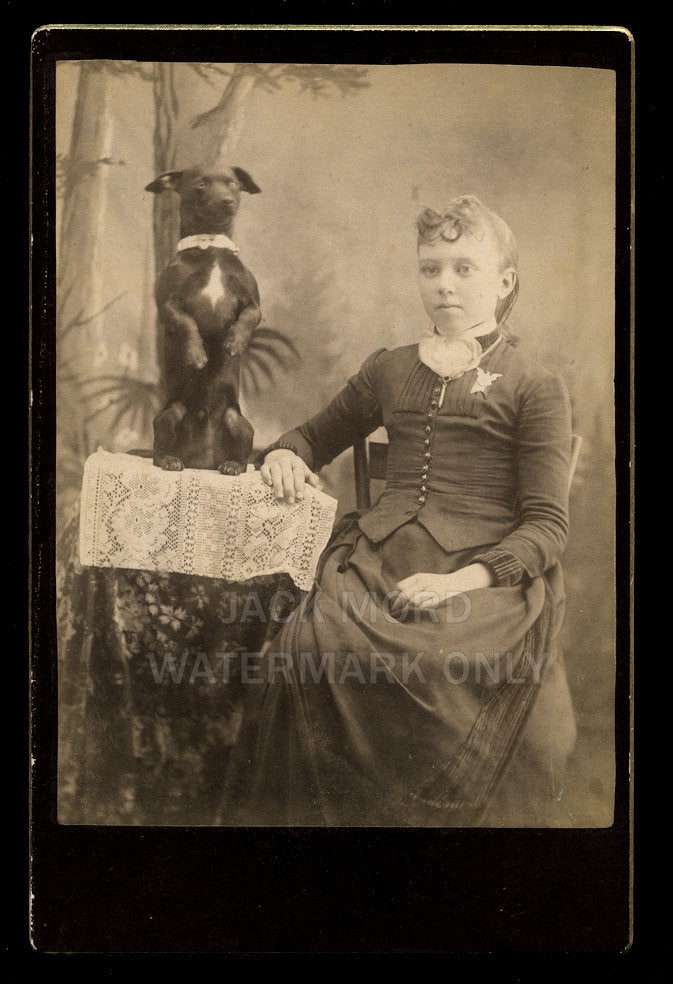 Antique Photo Girl & Funny Trick DOG / 1880s Cabinet Card