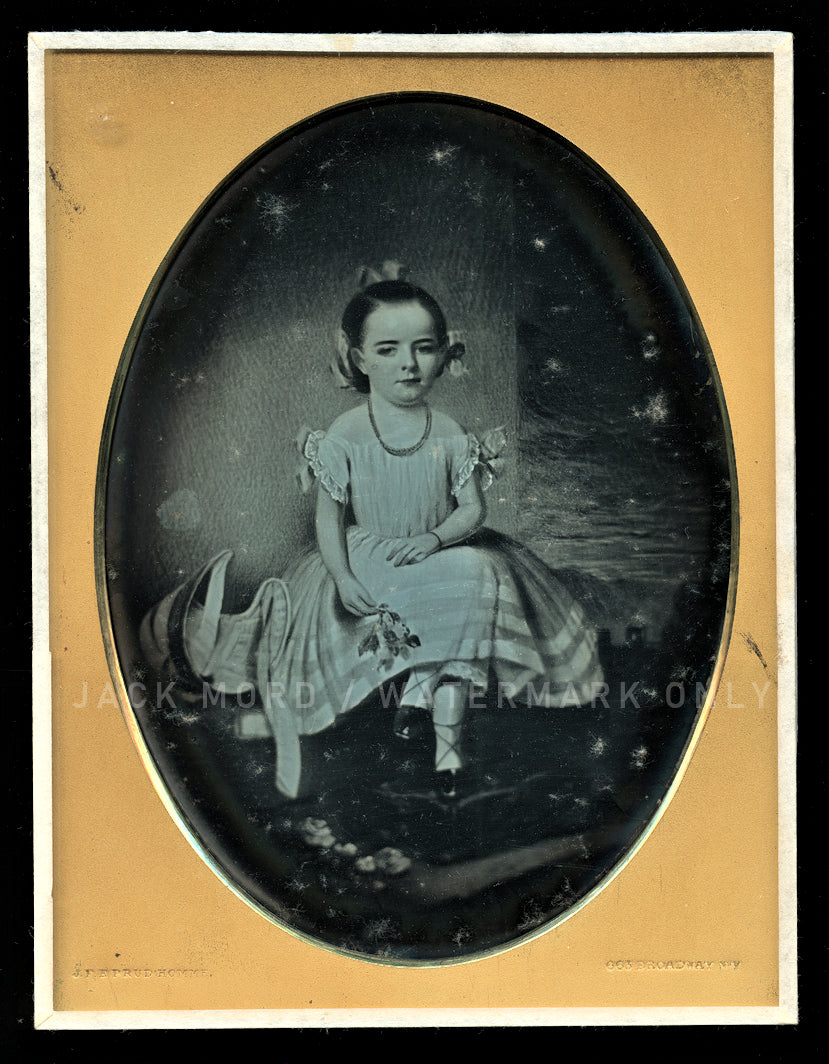 Rare HALF PLATE Daguerreotype of a Painting! By New York Photographer Prudhomme