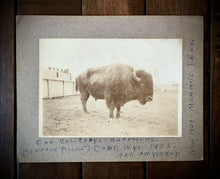 Load image into Gallery viewer, Rare Antique 1900s Photo Buffalo Bill Cody Wild West Show Buffalo Wyoming 1905