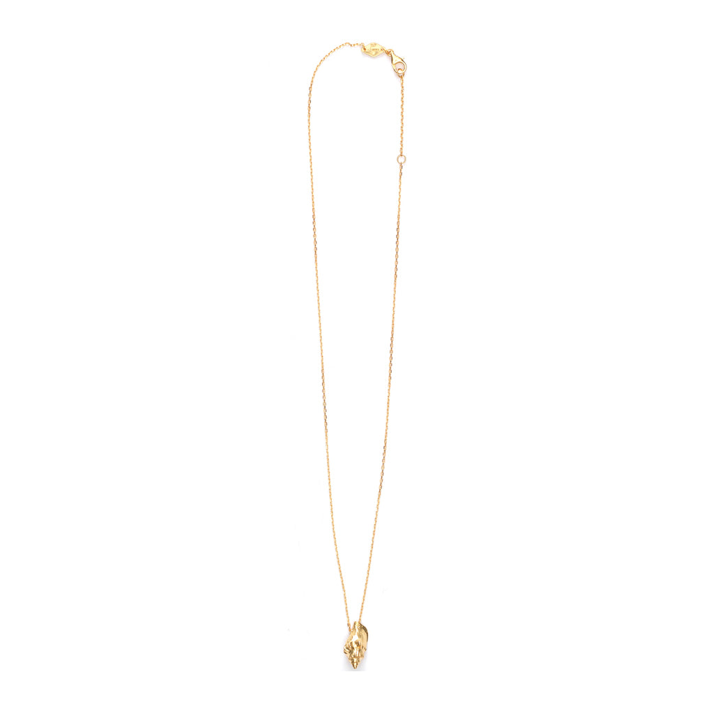Hetre Alresford Hampshire Boutique Anni Lu Floating Shell Necklace