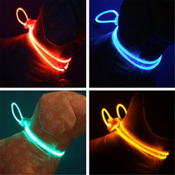 LED Dog Collar Light Chain Adjustable Luminous