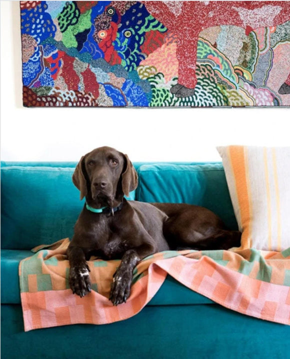 Moholo Dog Blanket