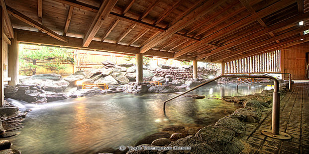 Types Of Japanese Onsen You Need To Know About