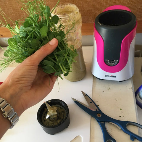 Smoothie with microgreens