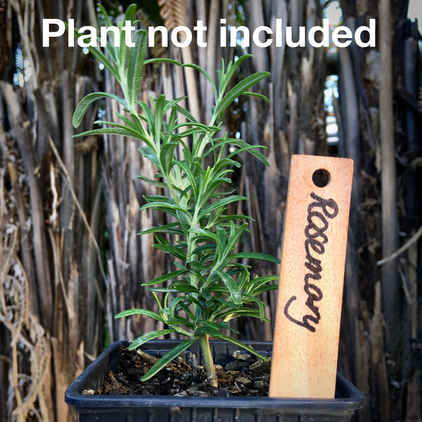 Plant Labels - Eco Timber