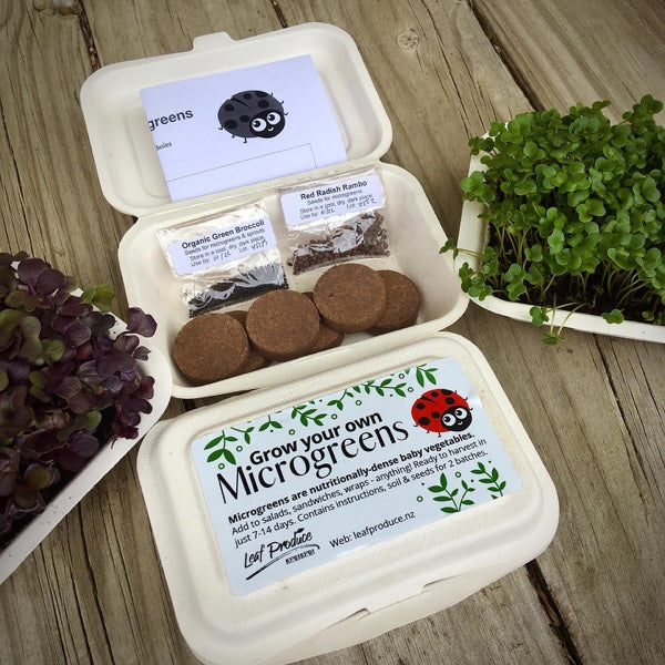 Grow Your Own Microgreens Kit